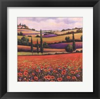 Fields of Poppies I Framed Print