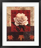 Framed White Chinese Rose