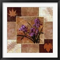 Framed Lavender Iris