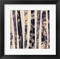 Framed Botanica 2