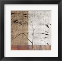 Framed Botanica 8