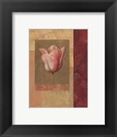 Framed Tulipe Rosee