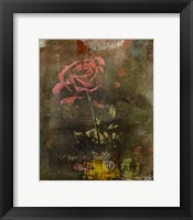 Framed Classic Rose I