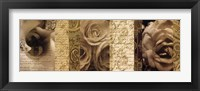 Poetic Roses 02 Framed Print