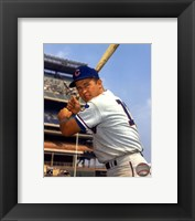 Framed Ron Santo - With Bat, posed