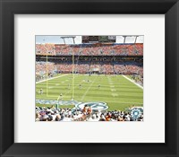 Framed Pro Player Stadium  - N.F.L. (Dolphins)