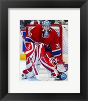 Framed David Aebischer - '06 / '07 Home Action