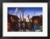 Swans Reflecting Elephants, c.1937 Framed Print