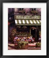 Framed Fleurs De Provence