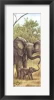 Mama Elephant With Baby Framed Print