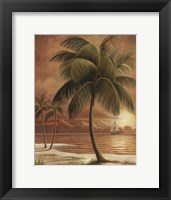 Island Palm I Framed Print