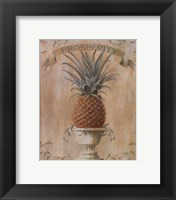 Framed Pineapple - Prosperity
