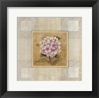 Framed Pink White Flower
