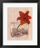 Framed Red Flower In Bowl With Rocks