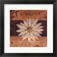 Framed White Flower - words
