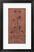 Framed Bontanique Nice