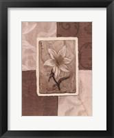 Framed Cream Flower