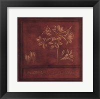Framed Flowers Plants