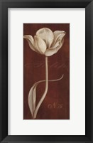 Framed White Tulip N 36