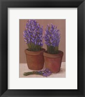 Framed Purple Flowers In Pots