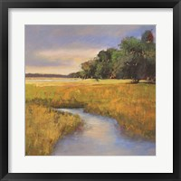 Low Country Landscape II Framed Print