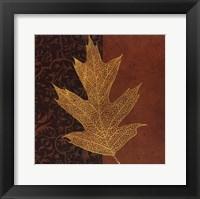 Quercus Framed Print
