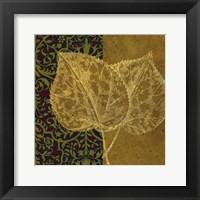 Linden Framed Print