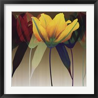 Lily Dance Framed Print