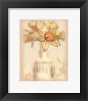Lovely Daffodil Framed Print