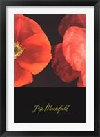 Dual Poppy Right Framed Print