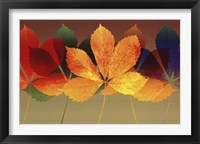 Leaf Dance II Framed Print
