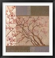 Framed Apple Blossom