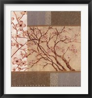 Framed Apple Blossom I
