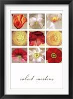 Framed Floral Collection