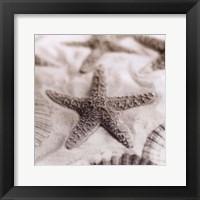 Framed La Mer 2