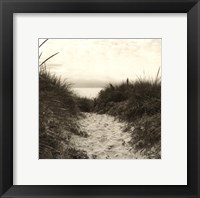 Framed Dune Path