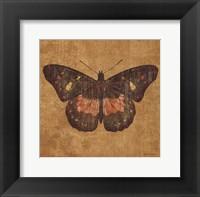 Ochre Butterfly Framed Print