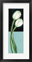 Framed White Tulip