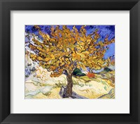 Framed Mulberry Tree in Autumn, c.1889