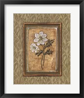 Peaceful Flowers III Framed Print