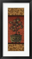 Tropical Plants III Framed Print