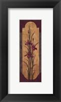 Greek Iris II - Petite Framed Print