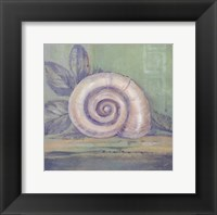 Tranquil Seashells III - Mini Framed Print