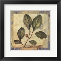Leaf Botanicals I Framed Print