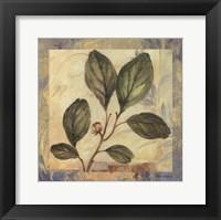 Leaf Botanicals I Framed Print