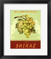 Shiraz Framed Print