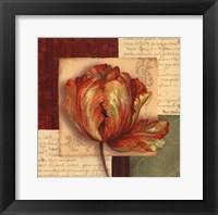 Bella Donna I Framed Print