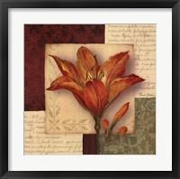 Bella Donna IV - Grande Framed Print