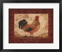 Gallo Dorato Framed Print