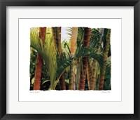 Framed Bamboo Ballet